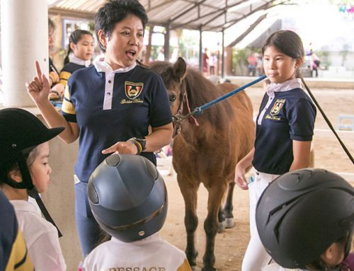 Horse Riding Lesson For Children